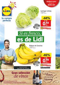 Ofertas de Lidl  en el folleto de Salamanca