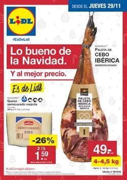 Ofertas de Lidl  en el folleto de Valencia