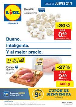 Ofertas de Lidl  en el folleto de Pamplona