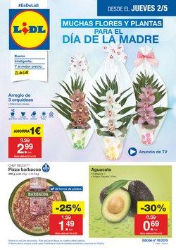 Ofertas de Lidl  en el folleto de Alcalá de Henares