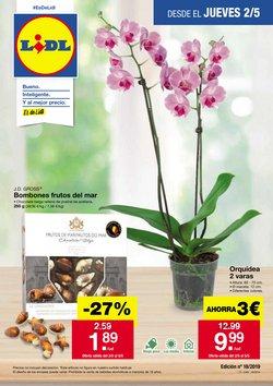 Ofertas de Lidl  en el folleto de Santa Cruz de Tenerife