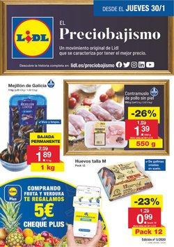 Ofertas de Lidl  en el folleto de Pinto