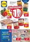 Ofertas de Hiper-Supermercados en el catálogo de Lidl en Castell Platja d Aro ( Publicado hoy )