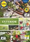 Ofertas de Hiper-Supermercados en el catálogo de Lidl en La Orotava ( Publicado ayer )