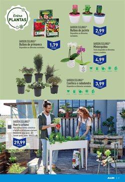 Ofertas de Plantas con flor  en el folleto de Aldi en Madrid