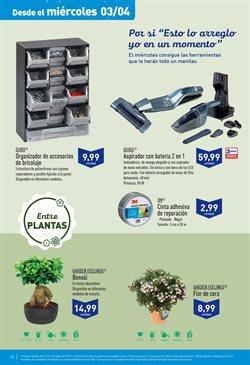Comprar árboles En Castellón Ofertas Y Descuentos
