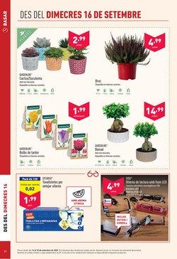 Ofertas de Arbustos en ALDI
