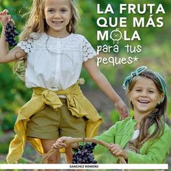 Ofertas de Supermercados Sánchez Romero  en el folleto de Madrid