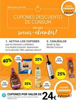 Catálogo Consum en Aldaia ( 3 días publicado )