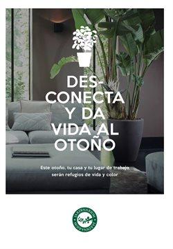 Ofertas de Jardín y bricolaje  en el folleto de Jardinarium en Ourense