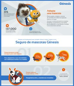 Ofertas de Génesis Seguros  en el folleto de Madrid