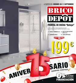 Ofertas de Brico Depôt  en el folleto de Carballo