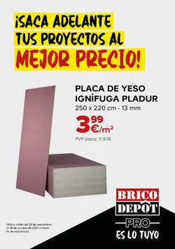Catálogo Brico Depôt ( Caduca mañana)