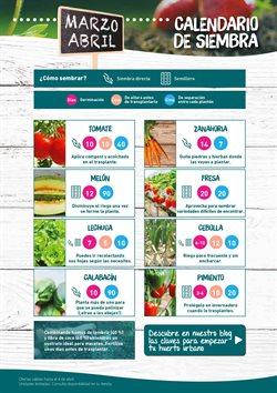 Ofertas de Zanahorias  en el folleto de Verdecora en Madrid