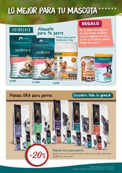 Ofertas de Comida para perros  en el folleto de Verdecora en Boadilla del Monte