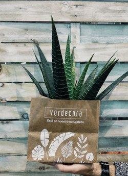 Catálogo Verdecora ( Caduca hoy)