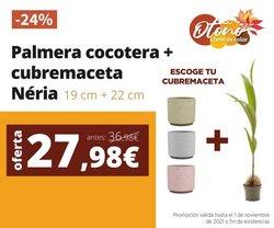 Ofertas de Jardín y Bricolaje en el catálogo de Verdecora ( 4 días más)