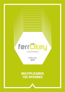 Ofertas de ferrOkey  en el folleto de Ávila