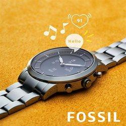 Catálogo Fossil ( Caducado)