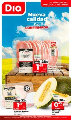 Catálogo La Plaza de DIA ( Publicado hoy)