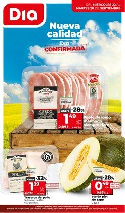 Ofertas de Hiper-Supermercados en el catálogo de La Plaza de DIA ( Publicado ayer)