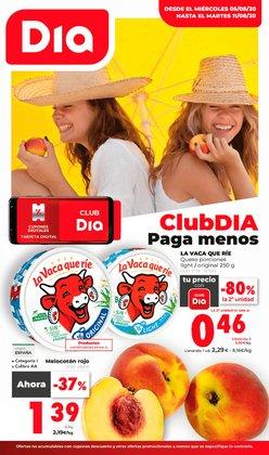 Catálogo La Plaza de DIA en Murcia ( Publicado ayer )