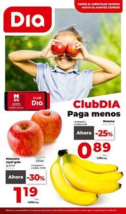 Catálogo La Plaza de DIA ( 3 días más )