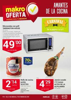 Ofertas de Scottex  en el folleto de Makro en Madrid