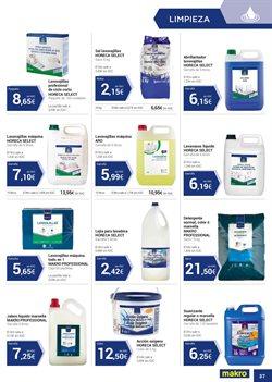 Ofertas de Detergente en polvo  en el folleto de Makro en Telde