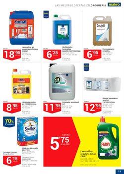Ofertas de Productos de limpieza  en el folleto de Makro en Telde