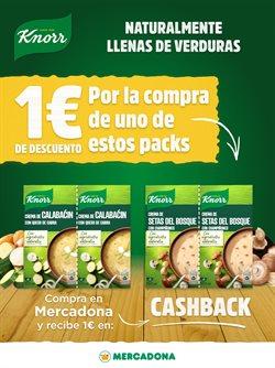 Ofertas de Hiper-Supermercados en el catálogo de Knorr en Redondela ( Publicado ayer )