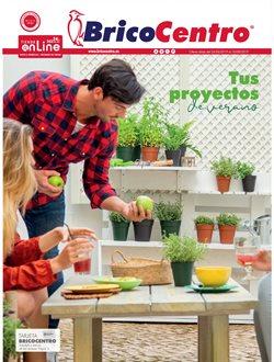 Ofertas de Jardín y bricolaje  en el folleto de BricoCentro en Durango