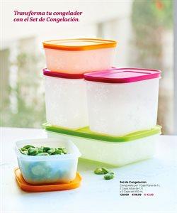 Ofertas de Congeladores en Tupperware