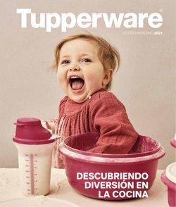 Ofertas de Hogar y Muebles en el catálogo de Tupperware ( Más de un mes)