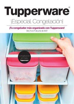 Ofertas de Hogar y Muebles en el catálogo de Tupperware ( Publicado ayer)