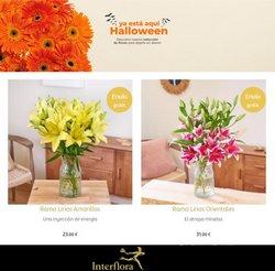 Catálogo Interflora ( 5 días más)