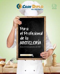 Catálogo CashDiplo en Santa Cruz de Tenerife ( Más de un mes )