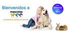 Cupón Mascotas1000 en Onil ( Publicado ayer )