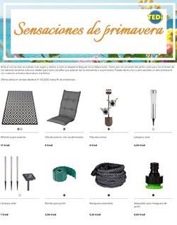 Catálogo TEDi en Alcoi ( Caduca mañana )