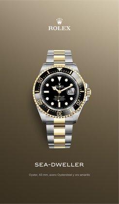 Catálogo Rolex ( Más de un mes)