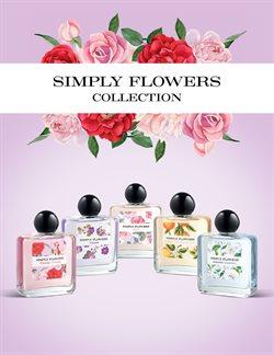 Ofertas de Perfumes  en el folleto de Mercadona en León