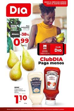 Ofertas de Hiper-Supermercados en el catálogo de DIA & GO en Villares de la Reina ( Publicado ayer )