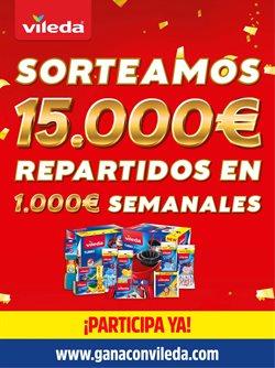 Ofertas de Hiper-Supermercados en el catálogo de Vileda ( Más de un mes)