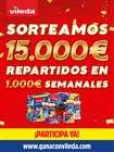 Catálogo Vileda ( Más de un mes )