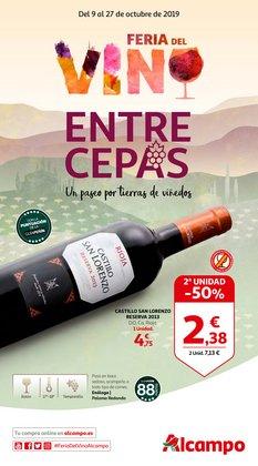 Ofertas de Alcampo  en el folleto de Teruel