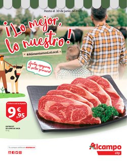 Catálogo Alcampo en Alicante ( Publicado ayer )
