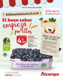Catálogo Alcampo en Almería ( Caduca hoy )