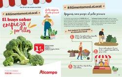 Catálogo Alcampo en Esplugues de Llobregat ( Publicado ayer )