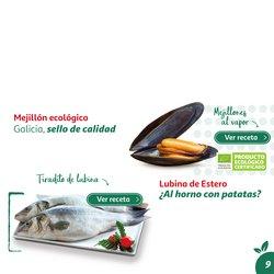 Ofertas de Estrella Galicia en el catálogo de Alcampo ( Más de un mes)