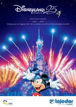 Ofertas de Viajes a Disneyland  en el folleto de Viajes Tejedor en Barcelona